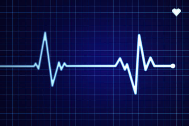 electrocardiogram - taking pulse stock photos and pictures