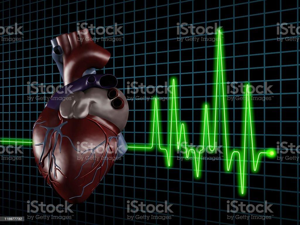 Electrocardiogram (ECG / EKG) with human heart on screen stock photo