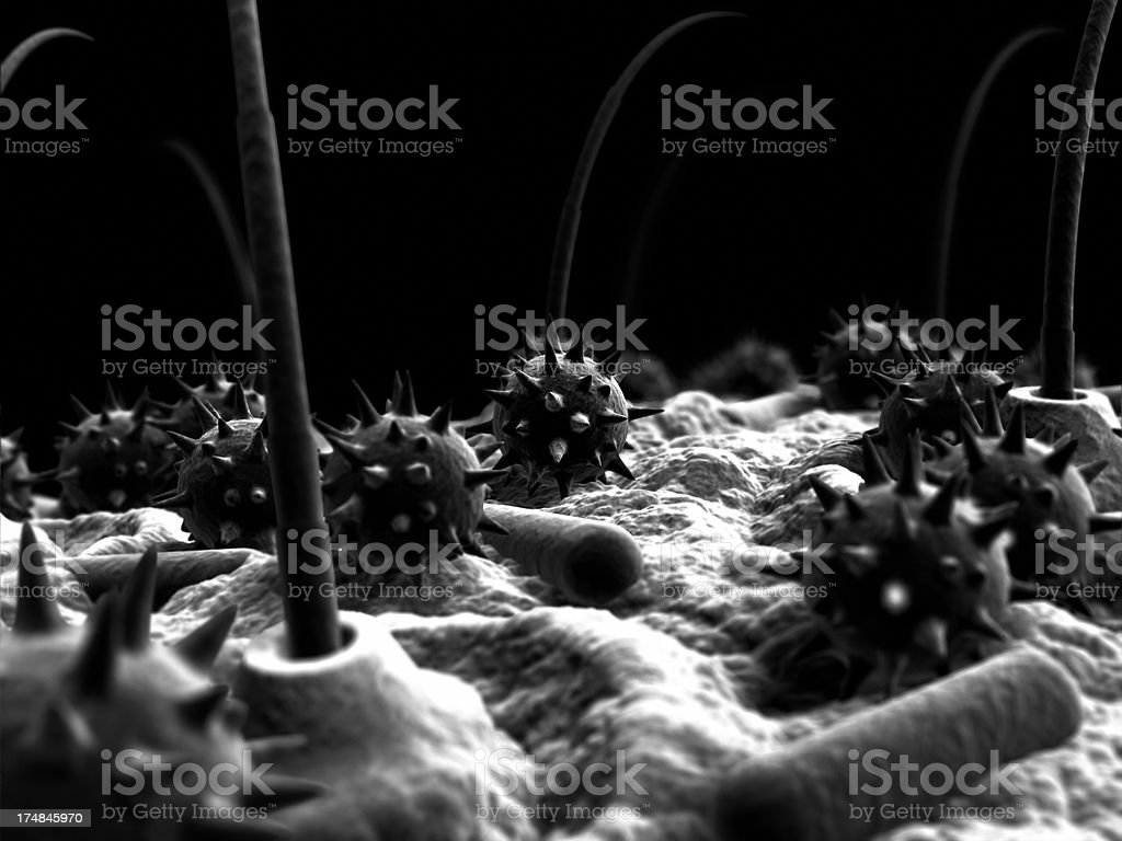 Electron Microscope of Pollen, Hair and Virus or Bacterial Capsules stock photo