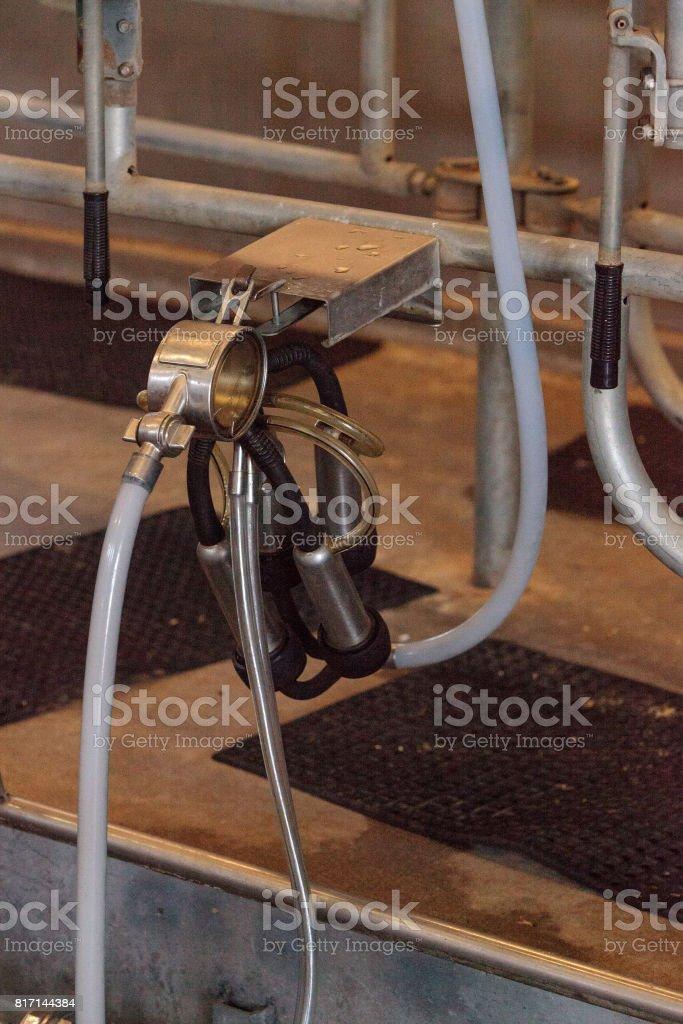 Für menschen melkmaschinen Hamburg: Frauen