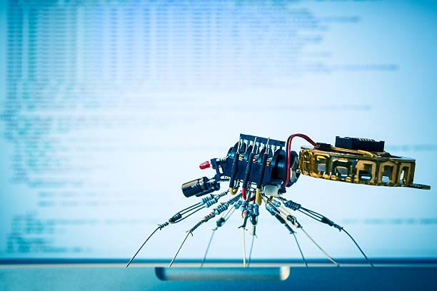 電子クモ検索の html ストックフォト