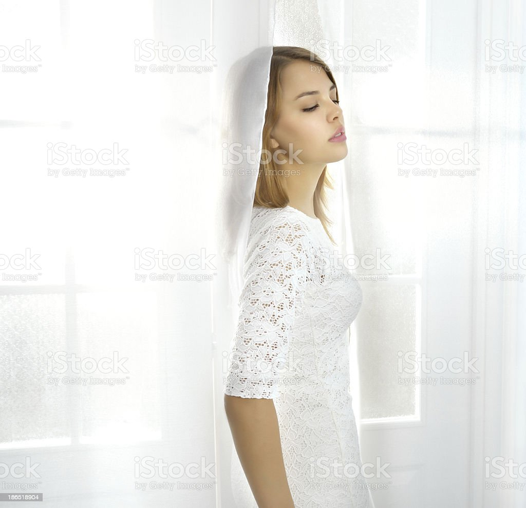 Elegance girl at the window royalty-free stock photo