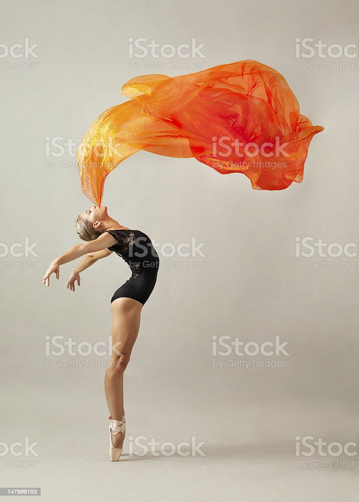 Elegance stock photo