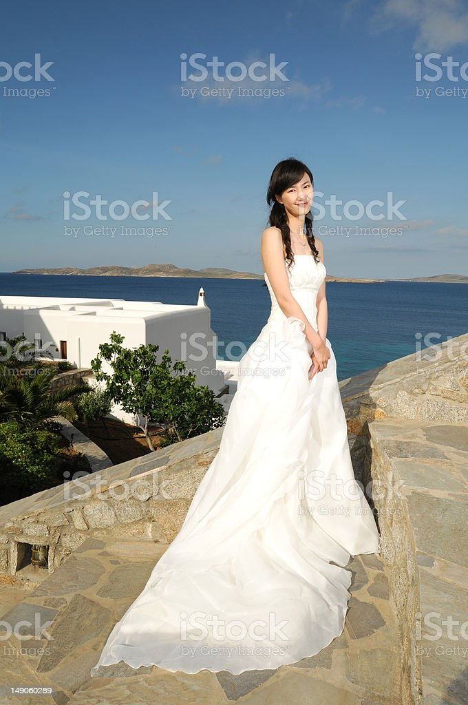 Elegant and Beautiful Bride royalty-free stock photo