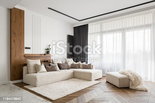 istock Elegant and comfortable living room 1194478942