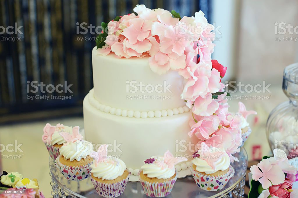 Elegant And Simple Two Tiered Cake Covered In White Royal Icing With Pink Decorative Flowers And Cupcakes All Around Stock Photo Download Image Now Istock
