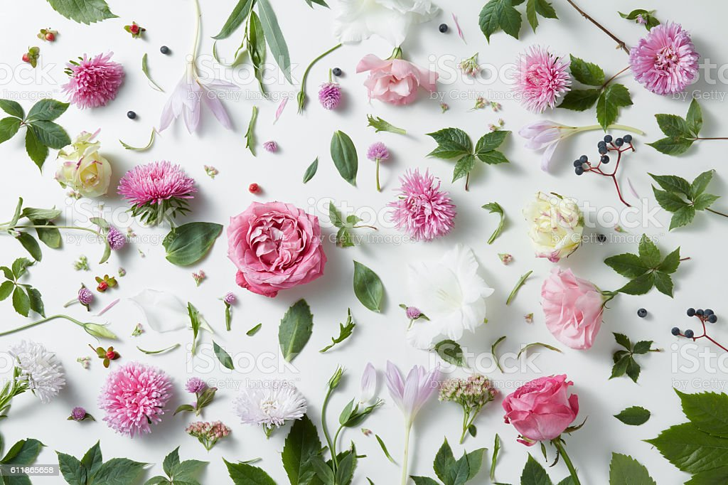 Elegant Background Of Pink Roses Stock Photo & More
