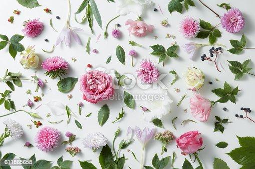 istock elegant background of pink roses 611865658