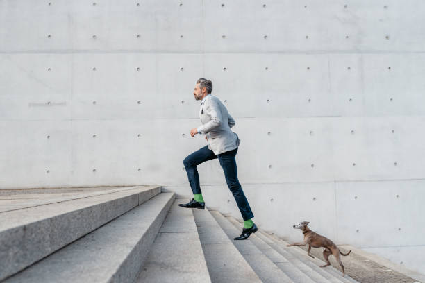 Elegant bearded businessman racing up stairs with dog outdoors picture id909444866?b=1&k=6&m=909444866&s=612x612&w=0&h=lrguoqzpgl7yq8vdvhm0krubhor1pflxshtzrpioye8=