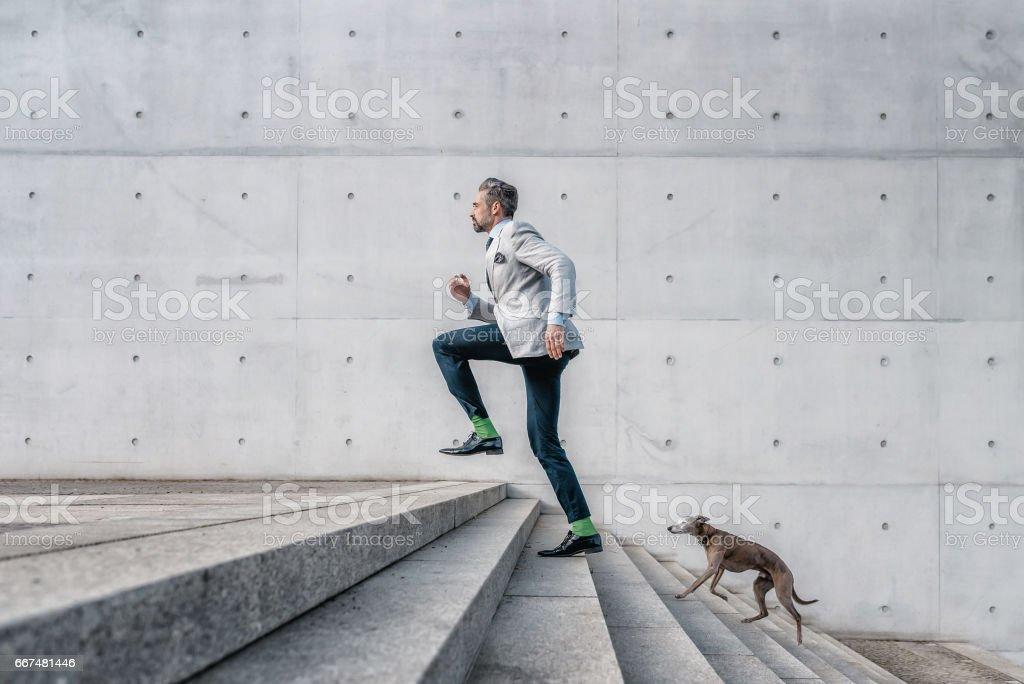 barbudo elegante empresario corriendo escaleras con perro en la ciudad de - foto de stock