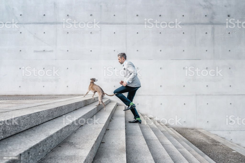 elegant bearded businessman running up stairs with dog outdoors in city stock photo