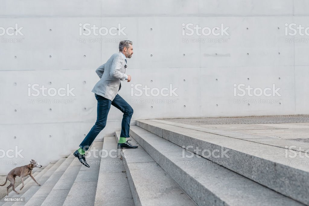 elegant bearded businessman running up stairs with dog outdoors stock photo