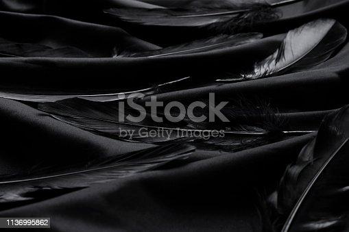 istock Elegant black feathers on a silky black background 1136995862
