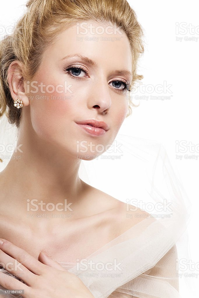 Elegant Bride royalty-free stock photo