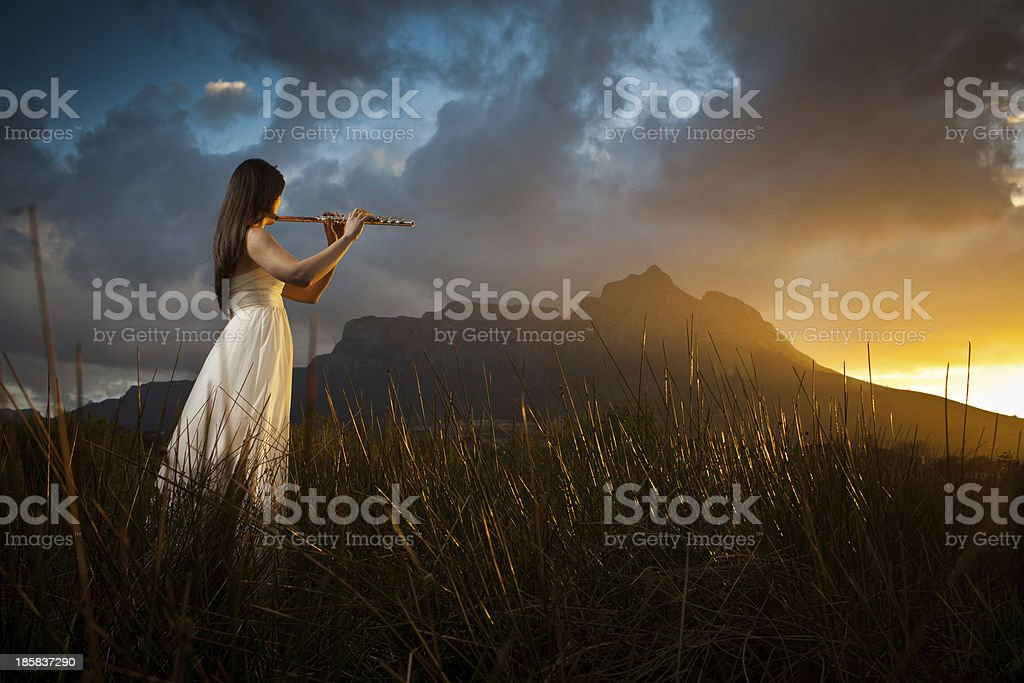 Elegant classical musician plays in long grass stock photo