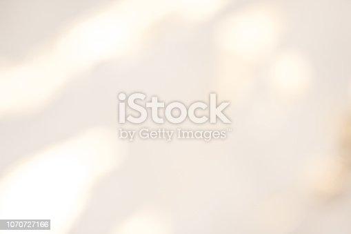 istock Elegant dreamy background. 1070727166