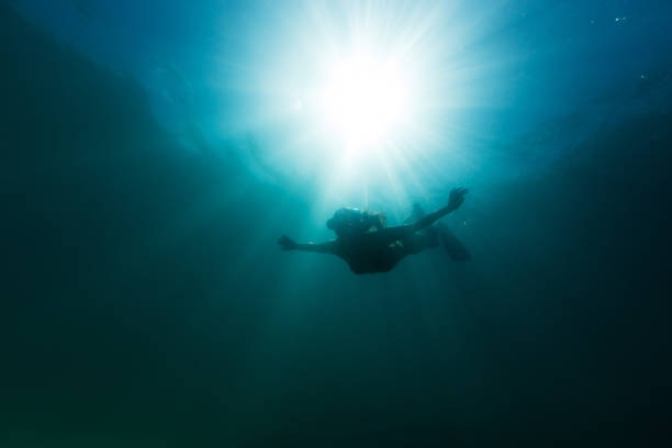 elegante mädchen tauchen in die tiefen des meeres - freitauchen stock-fotos und bilder
