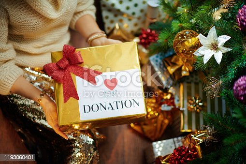 istock elegant housewife holding special Christmas charity gift box 1193060401