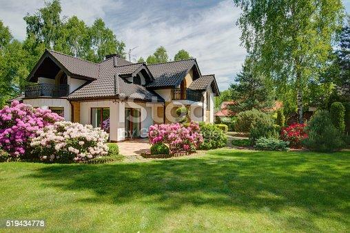 istock Elegant new villa with backyard 519434778