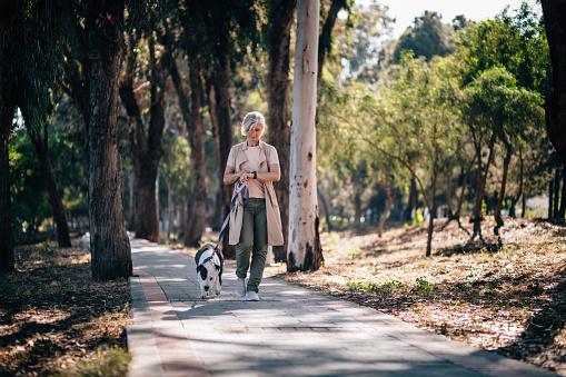Elegant senior woman walking dog and checking smartphone in park