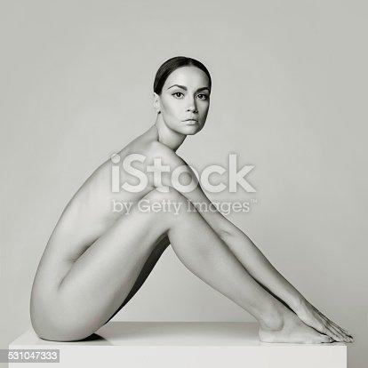 istock Elegant sitting lady 531047333