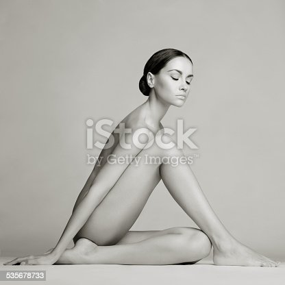 istock Elegant sitting lady 535678733