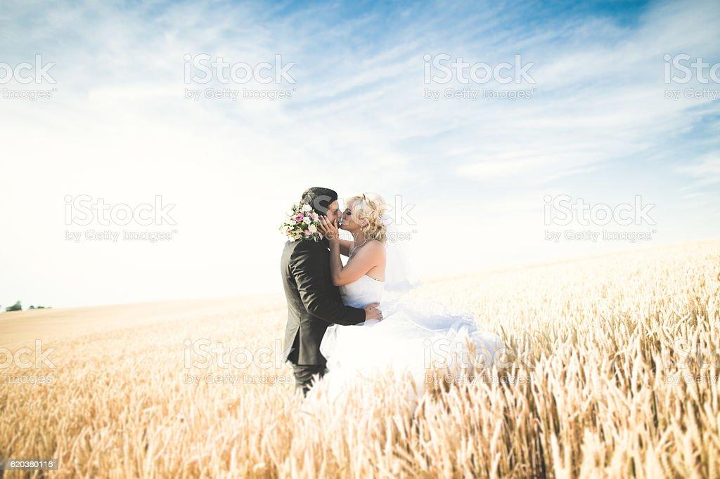 Elegante e cheio de loura feliz noiva e Noivo a posar em deslumbrante foto de stock royalty-free