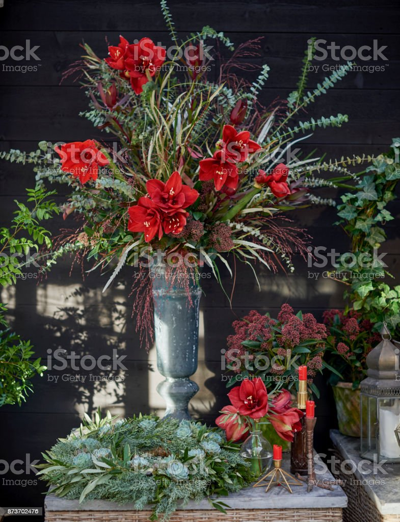 Elegant winter and Christmas flowers stock photo