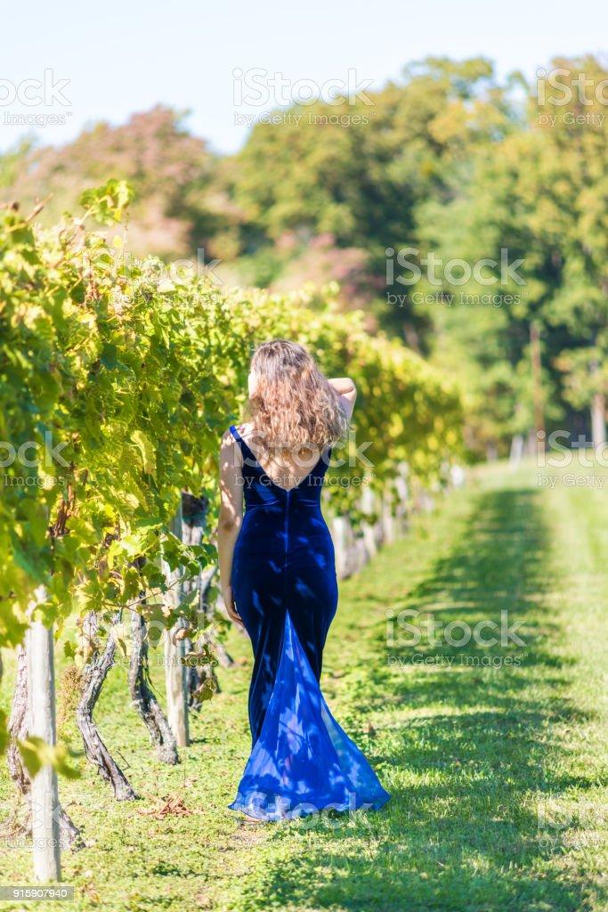 Fotografía de Elegante Joven Vestido De Terciopelo Azul Por Viñedo ...