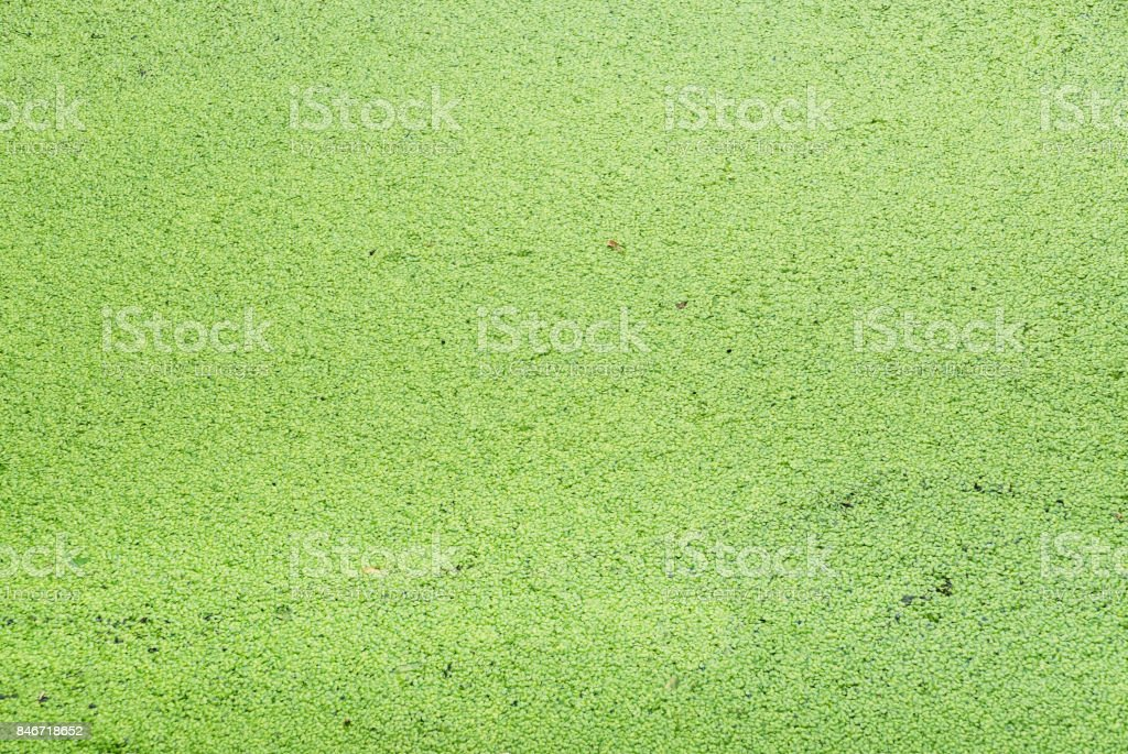 Element or concrete texture use for background. stock photo