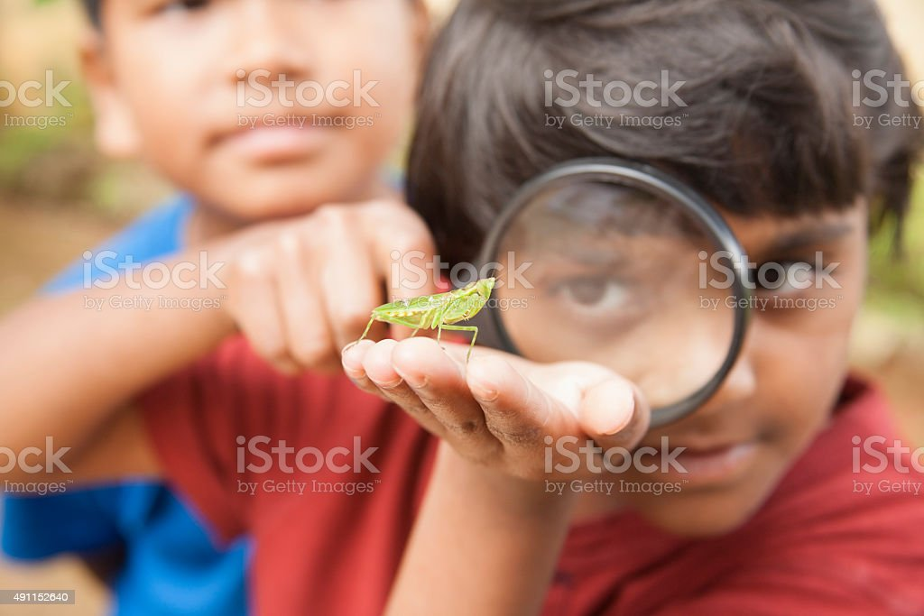 Elementary age boy enjoys discovering nature. Magnifying glass. Insect. stock photo