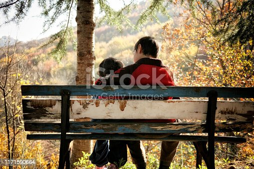 585604690istockphoto elementary age brother and sister sitting on park bench 1171590664