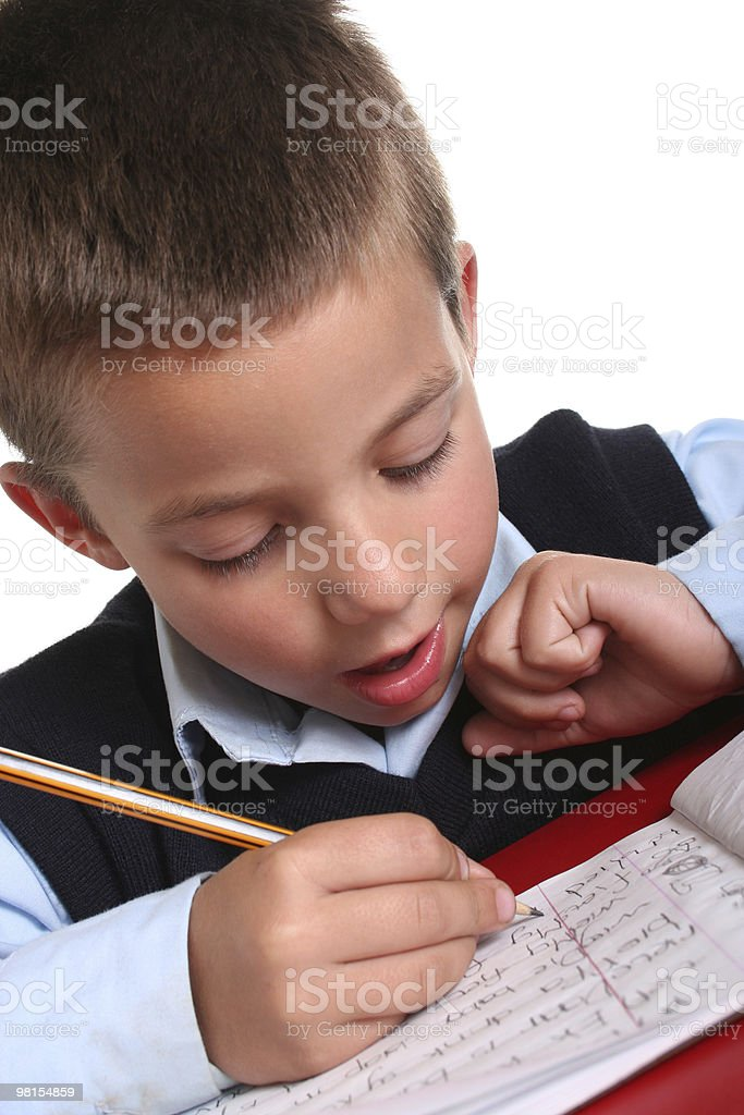 Elementary School boy royalty-free stock photo