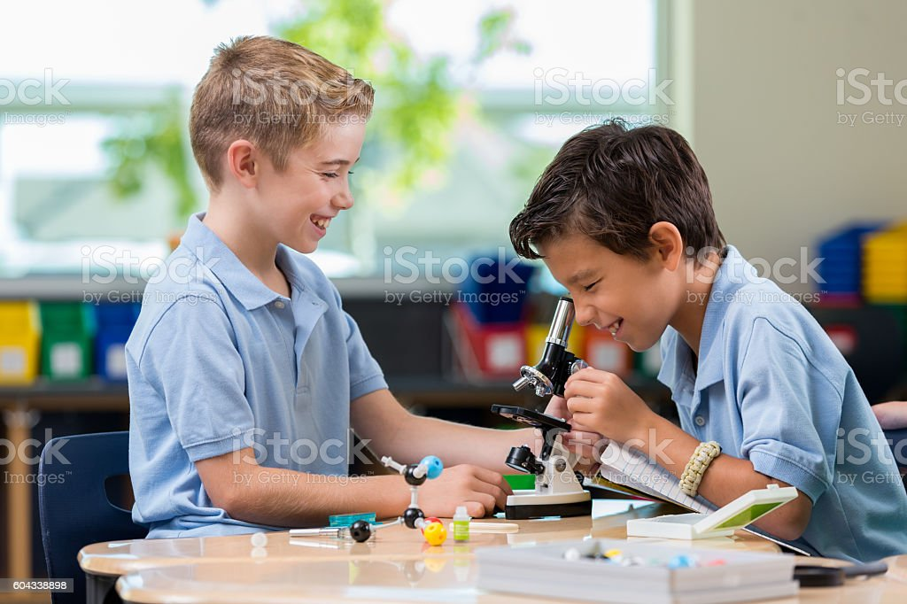 Elementary school boys work on science project stock photo