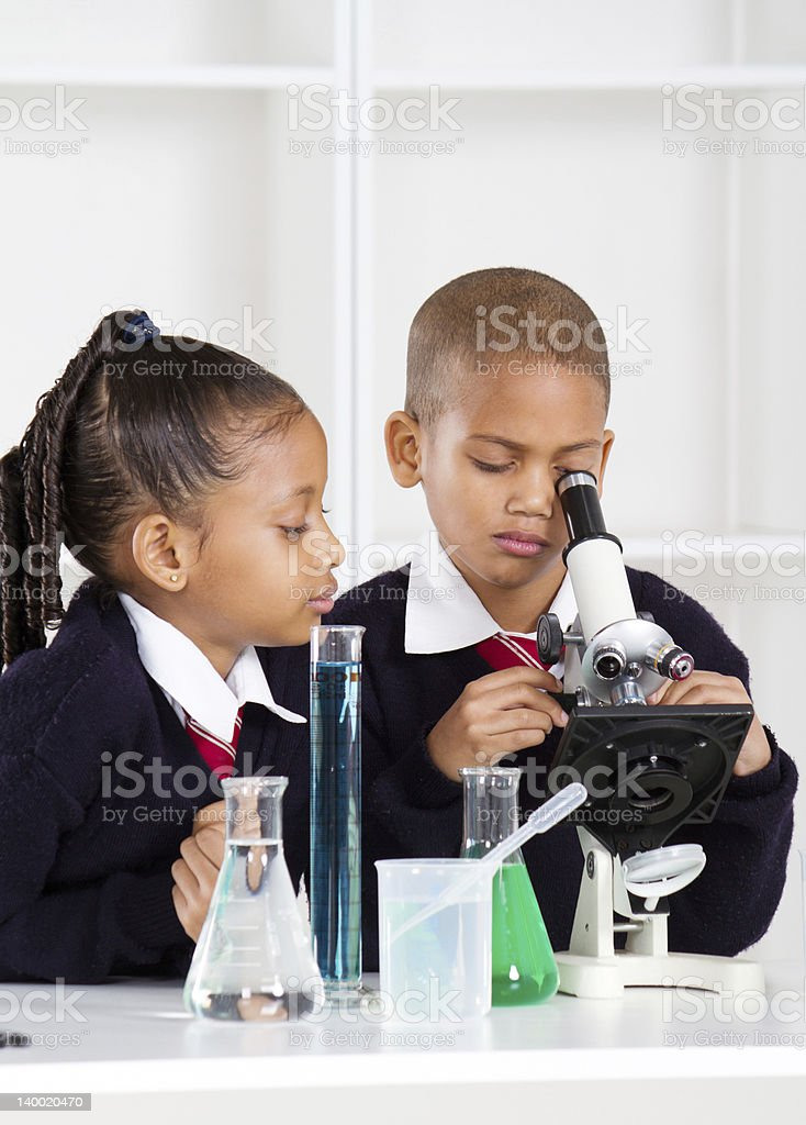 elementary school kids in science class royalty-free stock photo