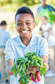 Adorable elementary age African American little boy is smiling and looking at the camera. He is holding a bundle of fresh radishes, and is wearing a private school uniform. Students are working in school vegetable garden and learning about plant life during science class.