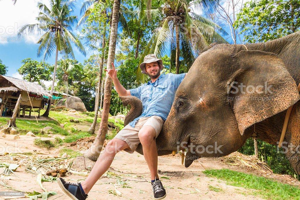 Elephan lifting ein tourist. – Foto