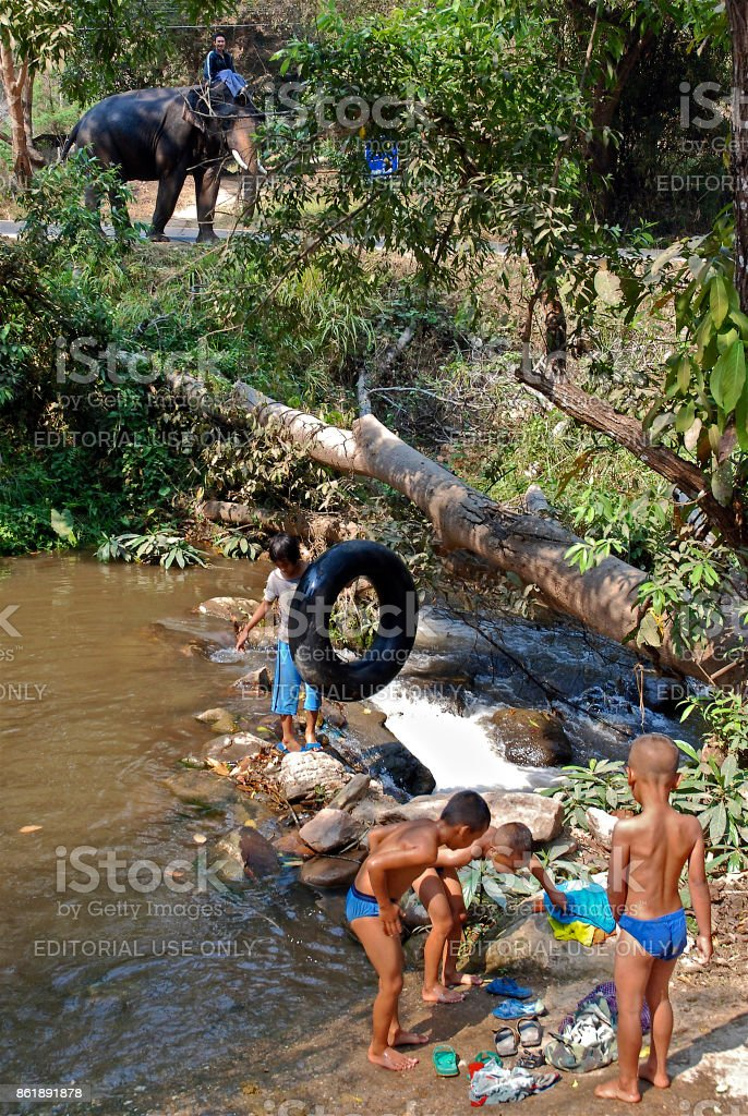Elephant and children playing in stream stock photo