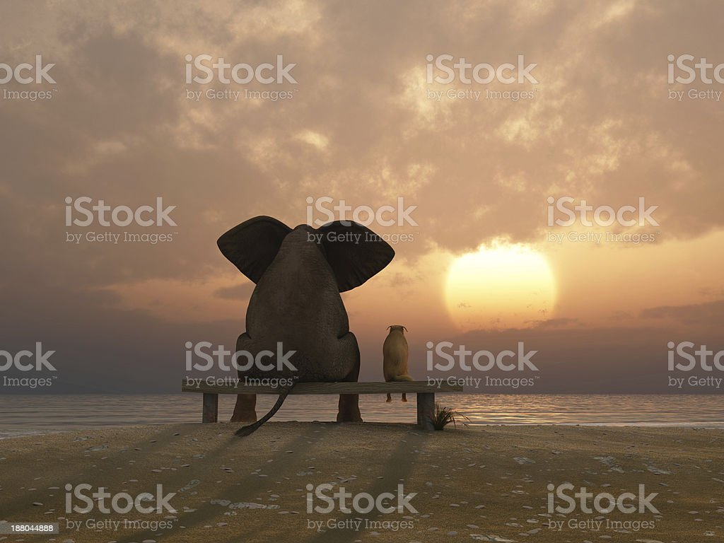 elephant and dog sit on a summer beach royalty-free stock photo