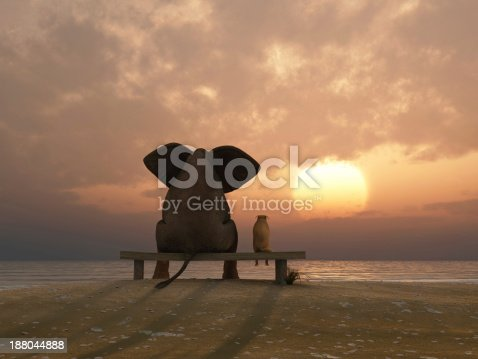 istock elephant and dog sit on a summer beach 188044888