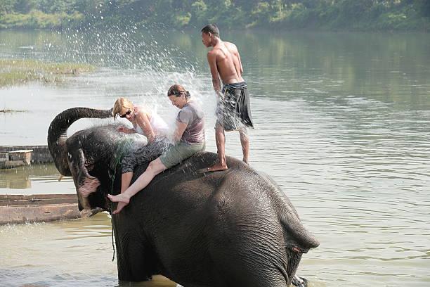 Elefanten im Bad. Chitwan, Nepal. 0851 – Foto