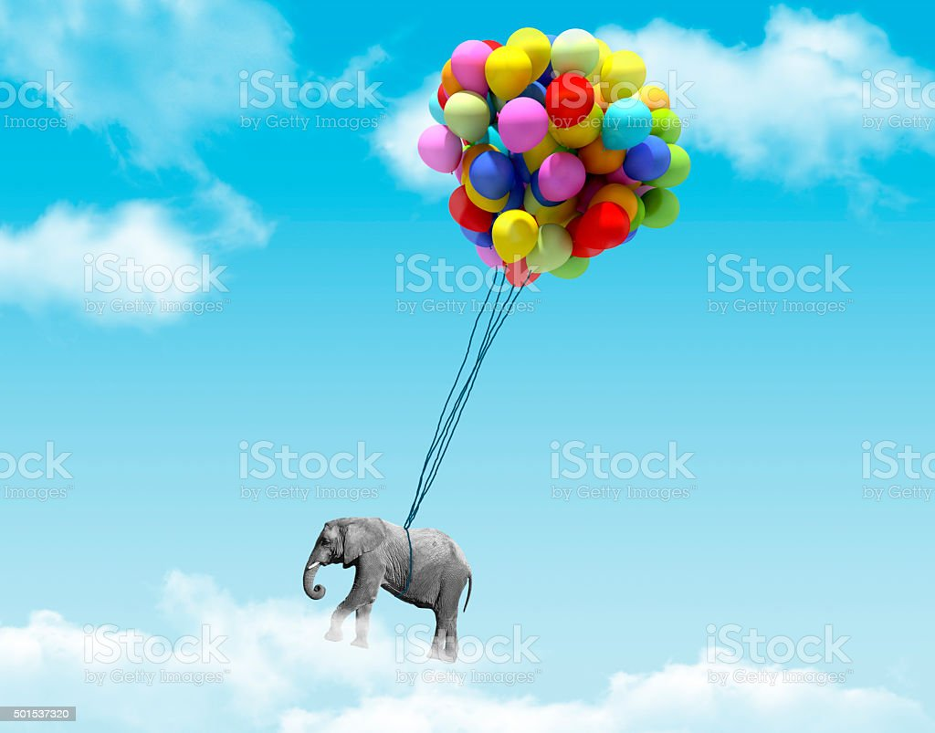 Elephant being lifted by balloons stock photo