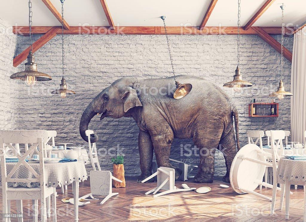 elephant calm in a restaurant interior stock photo
