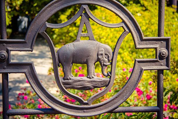 Elephant Close-up at Villa Bellini, Catania, Sicily, Italy stock photo