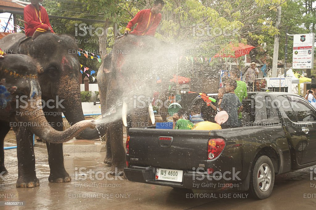 Elephant dance and play in water festival. royalty-free stock photo