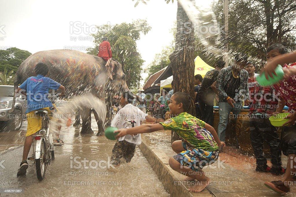 Elephant dancing and splashing water in Songkran Festival. stock photo