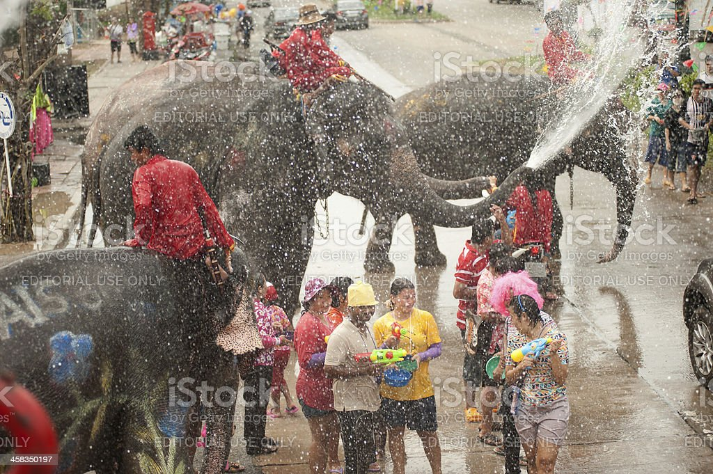 Elephant dancing and splashing water in Songkran Festival. royalty-free stock photo
