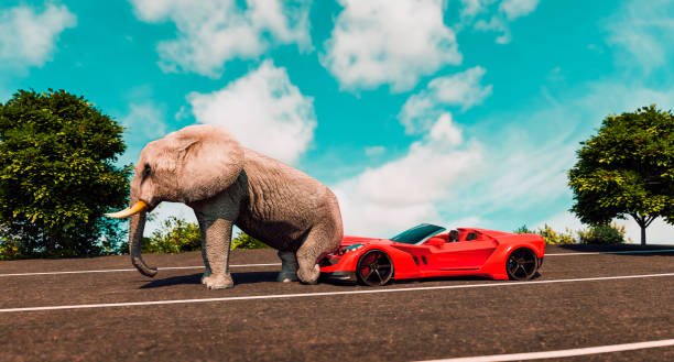 Elephant destroys expensive sports car parked on a street. stock photo
