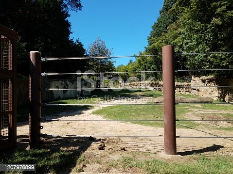 elephant enclosure at zoo with cables and poop and grass