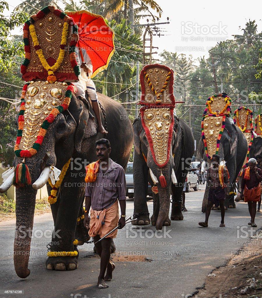 Elephant Festival At A Small Temple In Varkala Kerala ...